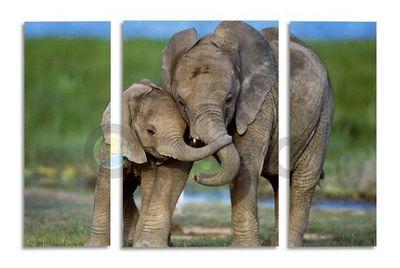 «Белые слоны» и «серые лошадки»