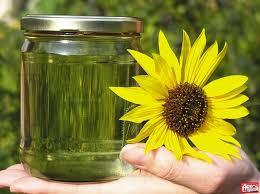 Биотопливо - альтернативное будущее украины?!