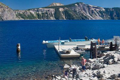 Бревно, которое не тонет 100 лет: загадка озера крейтер