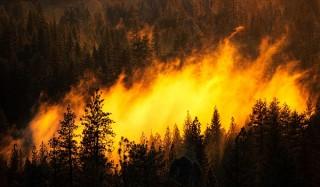 Чита в дыму, в забайкалье растет площадь лесных пожаров