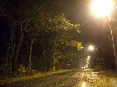 Дорога в мексике «дышит», как живая: видео