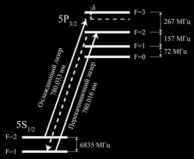 Использование поляризованного света позволяет воспроизводить более высококачественные и стабильные голографические изображения