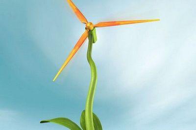 Исследователи работают над созданием биоразлагаемых лопастей ветрогенераторов