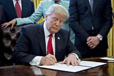 Экологи назвали жертв «стены трампа»