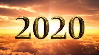 К 2020 году древесное биотопливо может стать конкурентоспособным