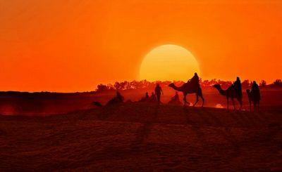 Как африка однажды станет источником энергии для европы