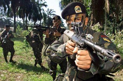 Курносые винтовки - «военные действия»
