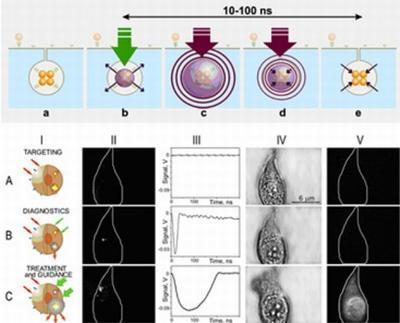 Микровзрывы золотых наночастиц помогут уничтожить клетки раковых опухолей