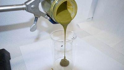 Найден способ превращать водоросли в сырую нефть меньше чем за час