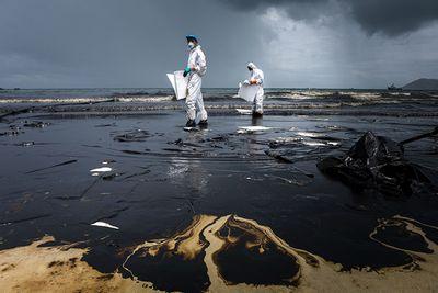 Нефтяные загрязнения смертельно опасны для промысловой рыбы