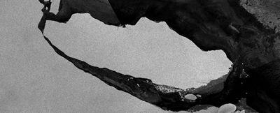 Открылась экосистема, спрятанная подо льдами тысячи лет