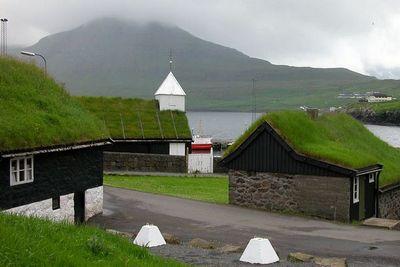 Озеленение крыш спасёт солнечные панели от перегрева