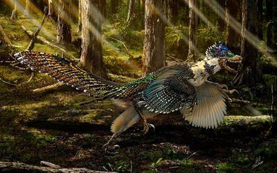 Парк юрского периода снова ошибся: велоцирапторы имели крылья иперья