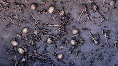 Побоище бронзового века - «военные действия»