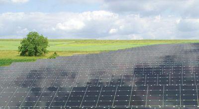 Самая большая фотоэлектрическая электростанция запущена в канаде