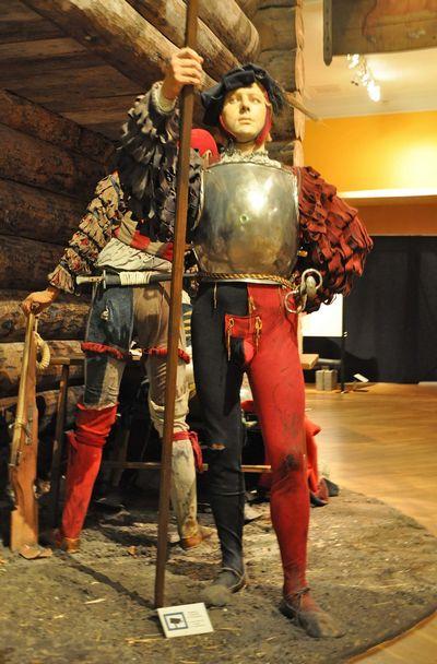 Шведская армия как экспонат