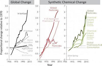 Ученые бьют тревогу из-за синтетических химикатов