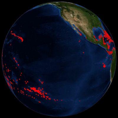Ученые оценили возможности кораллов кпереселению