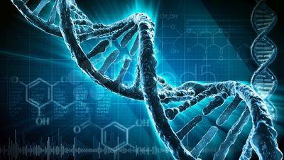 Ученые впервые изменили гены в эмбрионе человека