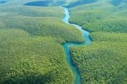 В джунглях амазонии нашли 450 гигантских геоглифов
