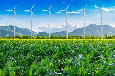 Великобритания поставила рекорд по использованию «зеленой» электроэнергии в 2017 году