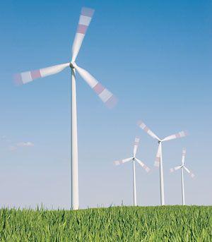 Ветряные турбины содействуют росту сельскохозяйственных культур