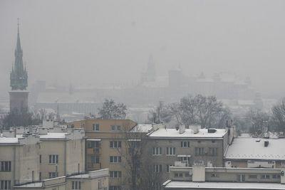 Впольском кракове прошла акция протеста против смога