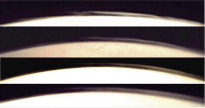 Высотные облака над марсианским лимбом: фото