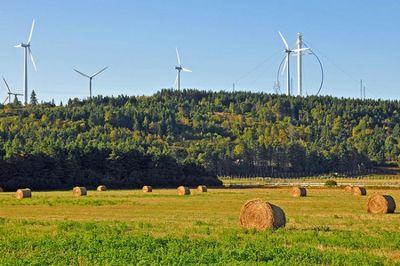 Зеленая энергия для нью-йорка
